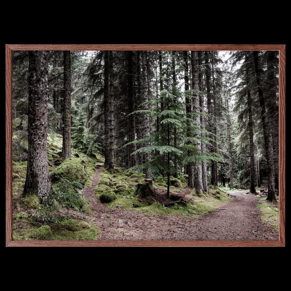 Skov plakat