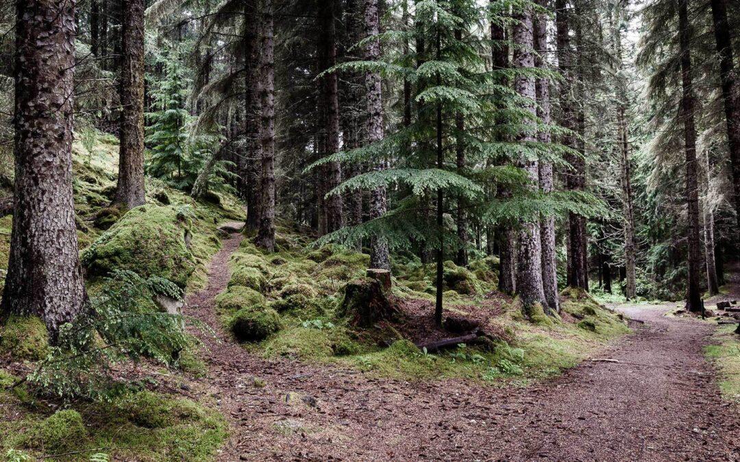 Skotland, eventyr, dramatik og fotografi