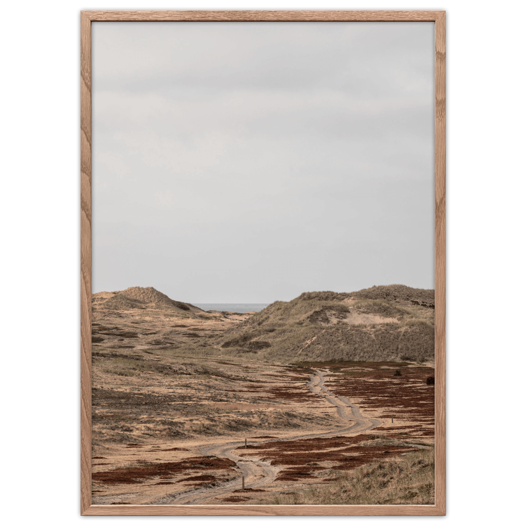 Ørkenen plakat, Anholt, Danmark.