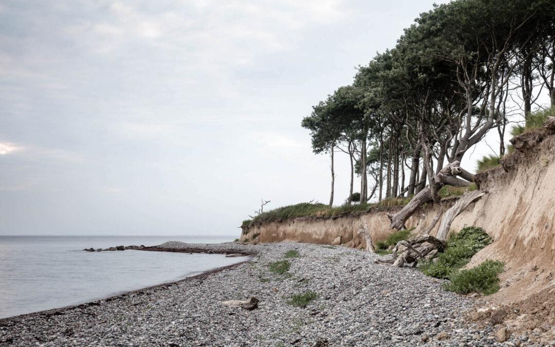 Danmark serien. Naturen, landet og fotografiet
